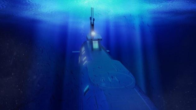 """Частные подводные левиафаны от """"Migaloo"""""""
