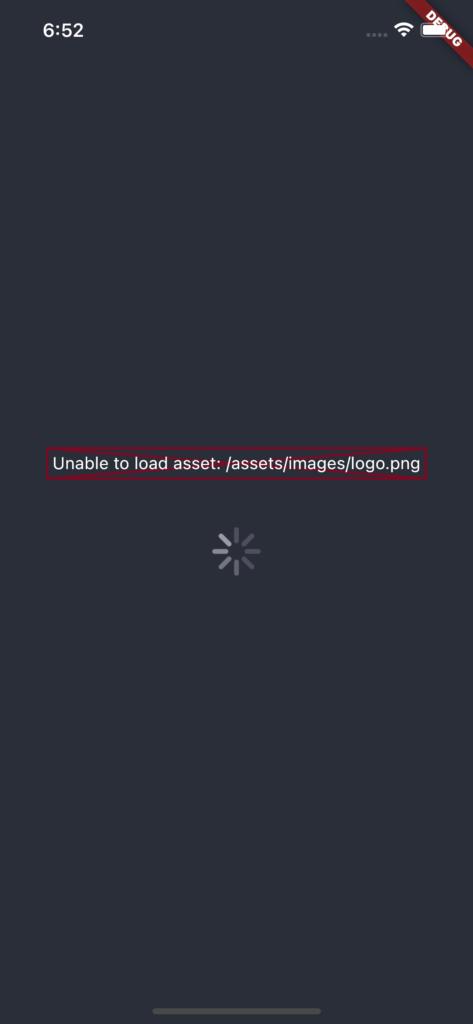 Flutter: Unable to load asset: /assets/images/logo.png